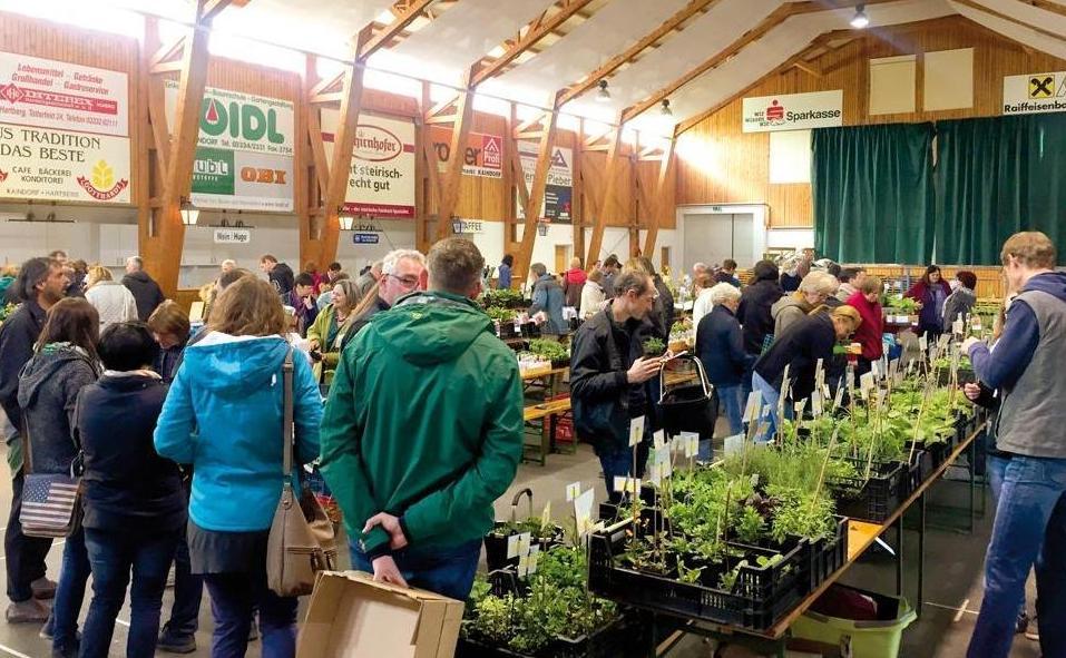pflanzentauschmarkt